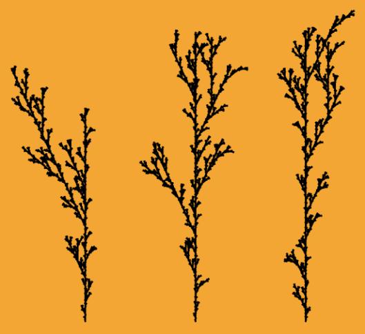 splant 1